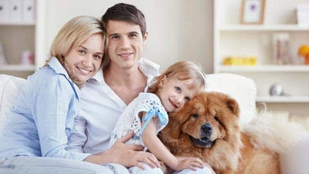 Wills & Trusts dog-young-family Direct Wills Newmarket